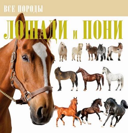 В. М. Жабцев. Лошади и пони. Все породы