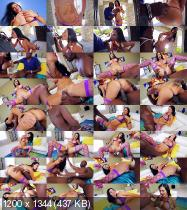 Lexs Breast Fest 6 (2015/WEBRip/HD)