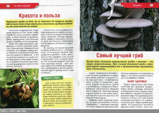 Сад, огород - кормилец и лекарь. Спецвыпуск №1 (январь 2016)