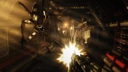 Aliens vs. predator (2010/Rus/Repack от =nemos=). Скриншот №1