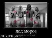 Демотиваторы '220V' 02.02.16