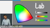 Основы композиции и цвета в веб-дизайне (2014) Видеокурс