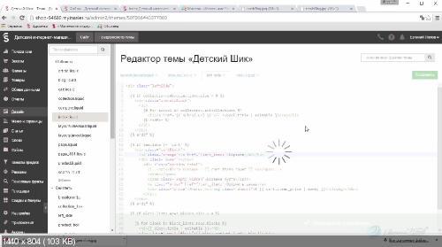 Евгений Попов. Быстрое создание интернет магазинов на платформе InSales