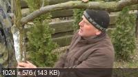 Евгений Федотов, Роман Врублевски. Cадовая хирургия (2012) Видеокурс